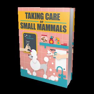 Como cuidar de animales pequeños